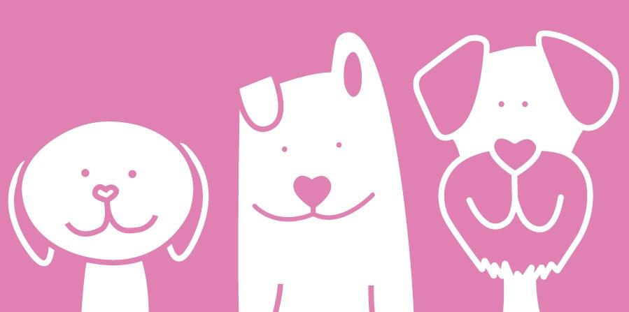 fellfreude: das wohl liebevollste Hundefutter für jedes Alter (jung oder klein, erwachsen und eher in Rente)